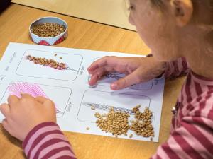Übergreifender Projektunterricht an der CJD Grundschule Adensen-Hallerburg.